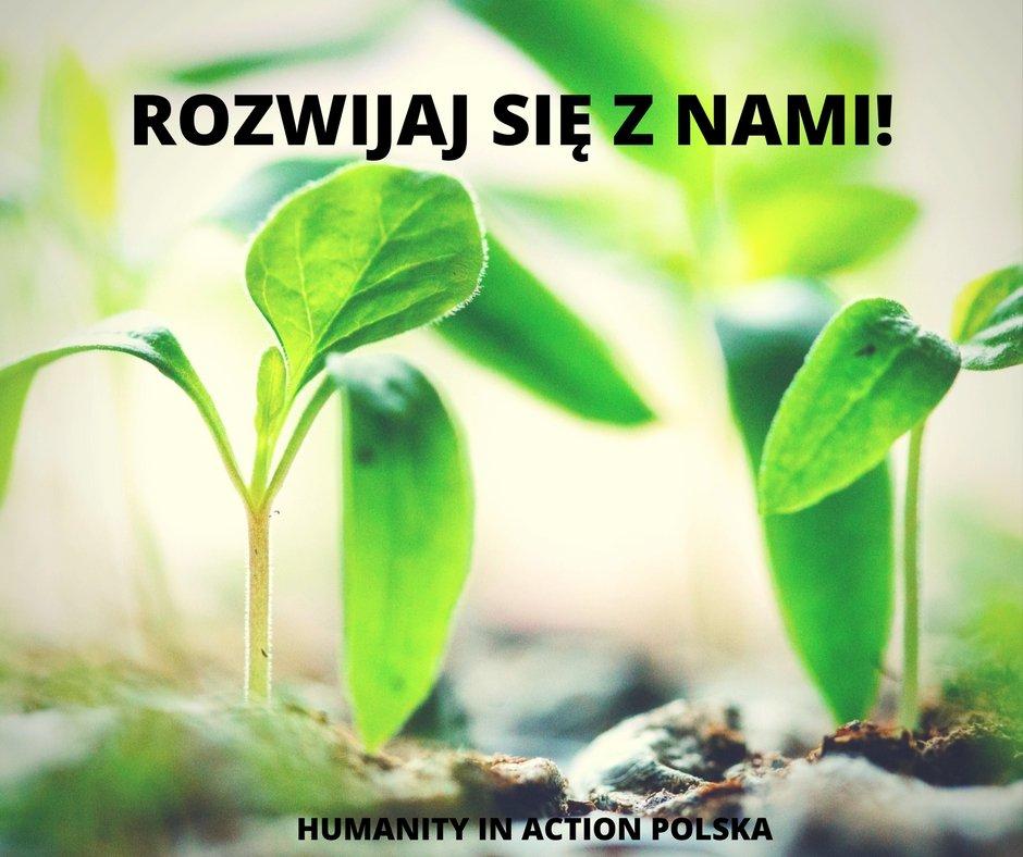 Staż w HIA Polska